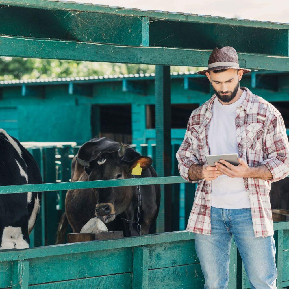 Técnico Superior en Ganadería y Asistencia en Sanidad Animal