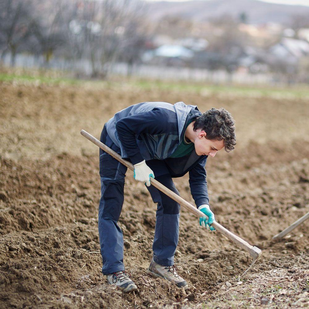 Título Profesional Básico en Actividades Agropecuarias