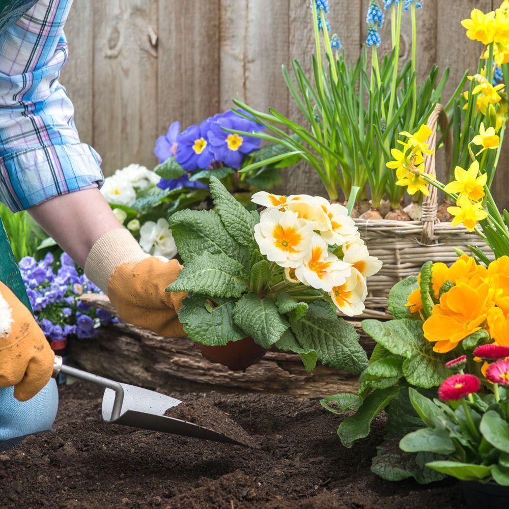Título Profesional Básico en Agro-jardinería y Composiciones Florales