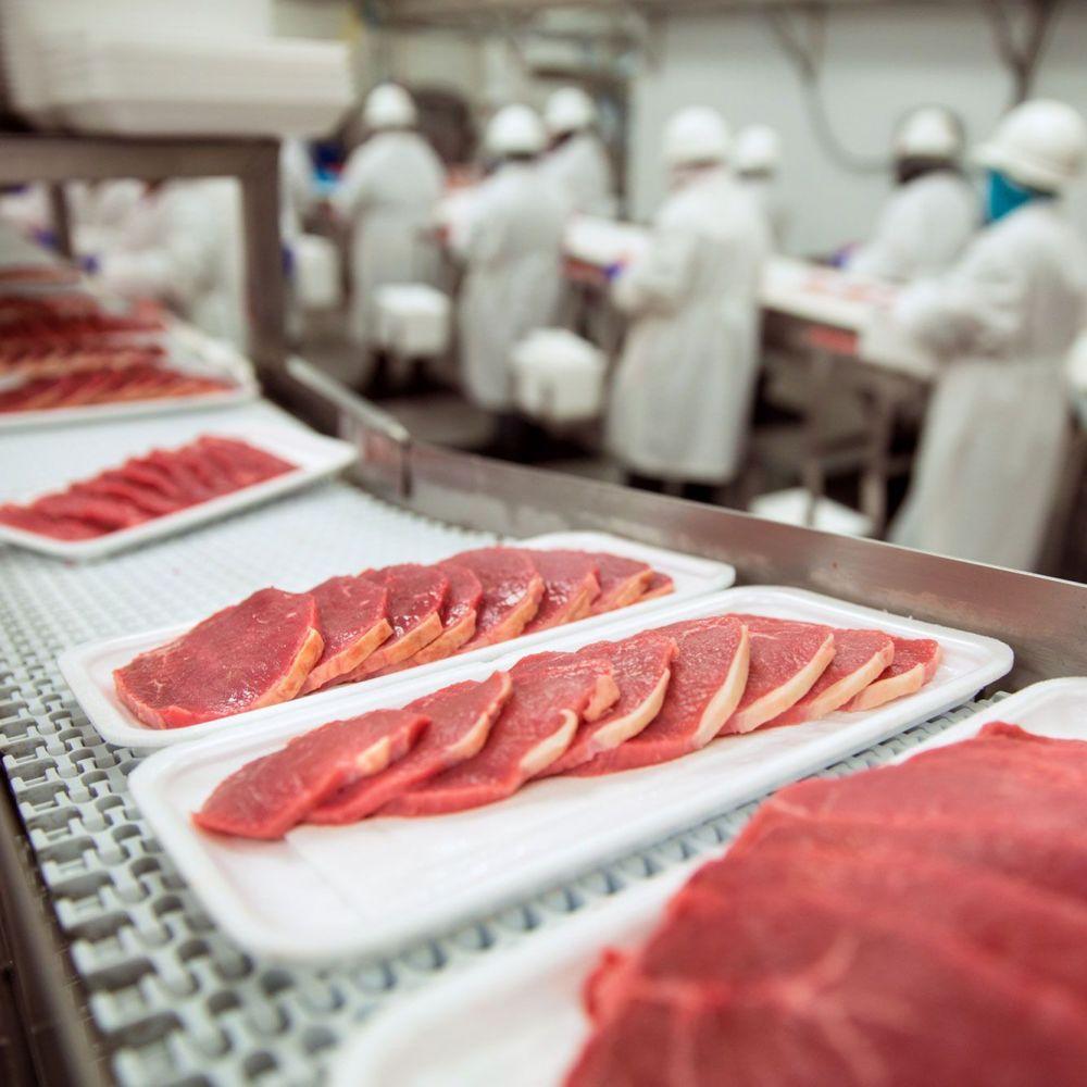 Técnico en Elaboración de Productos Alimenticios